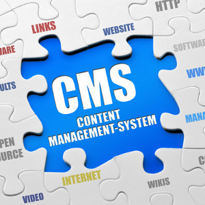 Why Are CMS Websites Budget-Friendly and Beneficial To Small Businesses?