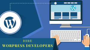 Senior WordPress Website Developer