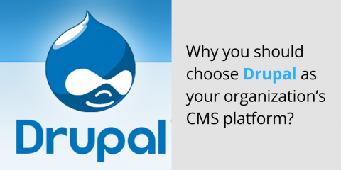 Why you should choose Drupal as your organization's CMS platform