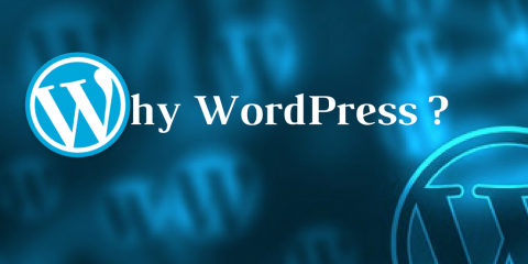 Why WordPress Provides the Best Website Solution for Small Businesses